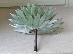 Have always loved this foliage.. great color, wonderful texture.. Silver leaf foliage composite bouquet...by Floral Verde, LLC