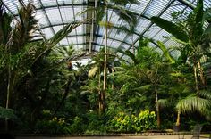 frankfurt-palmengarten