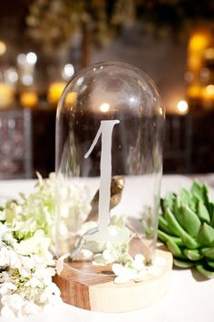 Still searching for that perfect wedding reception ideas for your big day? Scroll through this gallery to see 37 winning combinations! Then head to Wedding Reception Gallery for a whole lot more fabulous inspiration! Mod Wedding, Wedding Events, Wedding Reception, Wedding Shot, Wedding Gowns, Dream Wedding, Terrarium Wedding Centerpiece, Wedding Centerpieces, Centrepieces