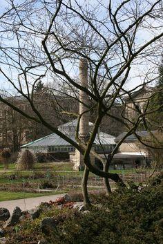 Le Jardin Botanique de l'Université de Strasbourg - Strasbourg