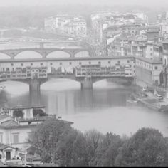 Ponte Vechico - Florence, Italy  Medici Family decreed only goldsmiths could do business on the bridge right next to their home estate, the Piti Palace   Not far is 'Il Porcellino' / the boar statue.  Rubbing his nose and dropping a coin placed in his mouth to the drain below is supposed to ensure you return to Florence.