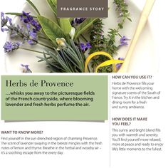 #fragranceoftheweek Herbs de Provence! Whisks you away to the picturesque fields of the French countryside, where blooming lavender and fresh herbs perfume the air.