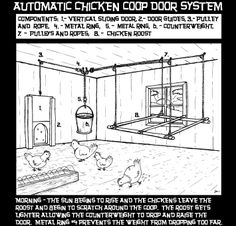 In March 2011 MOTHER EARTH NEWS asked our readers to submit their designs for the Automatic Coop Door Contest and the entries were fantastic! Congratulations goes to our three top contestants and their unique designs. From MOTHER EARTH NEWS magazine.