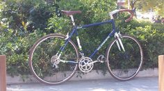 Perfect bike. Holdsworth