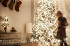 Christmas Tree Photos Photographing the Christmas Tree