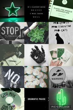 credit @graceadeline14 | a slytherin-ish aesthetic for my gf