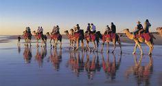 Untouched world by Camel, a unique Australian experience!