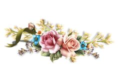 Divagar em POESIAS - PROVERBIOS - PENSAMENTOS : Poema - Foi para Ti que Criei as Rosas - Eugénio de Andrade Algarve, Frame, Label, Search, Jewelry, Everything, Poems, Paintings, Flowers