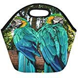Two Big Colorful Macaw Parrot Insulated Lunch Tote Bag Reusable Neoprene Cooler Portable Lunchbox Handbag For Men Women Adult Kids Boys Girls Insulated Lunch Tote, Lunch Tote Bag, Handbags For Men, Kids Boys, Parrot, Boy Or Girl, Lunch Box, Colorful, Big