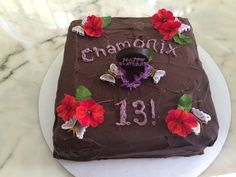 Mint Chocolate Chip Ice Cream cake covered in Mint Chocolate Ganache