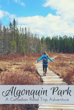 Looking for a great road trip in Ontario, Canada? Then look no further than Algonquin Park, conveniently located on a route from Ottawa to Toronto! Canada National Parks, Parks Canada, Fishing Ontario, Ontario Provincial Parks, Ontario Parks, Ontario Travel, Algonquin Park, Road Trip Packing, Portugal