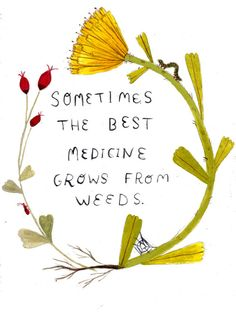 Springtime medicine inspiration from Great Quotes, Quotes To Live By, Me Quotes, Motivational Quotes, Inspirational Quotes, Nature Quotes, Strong Quotes, Qoutes, The Words