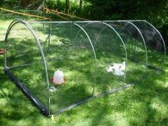 Building a Chicken Tractor with Humor Project » The Homestead Survival