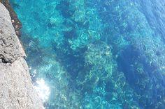 天然のプール!?とっておきの磯、トウシキ海岸へ。|おでかけコロカル 伊豆大島編