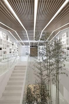 Galería de Institución Educacional Poly WeDo / ARCHSTUDIO - 7