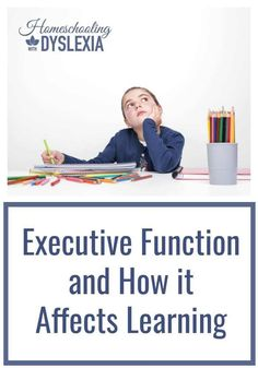 What is Executive Fu