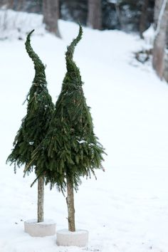 Beautiful trees made of fir branches by Swedish blogger Hanna Björklund at Vackra.