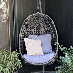 You don't have to limit yourself to embellishing the within of your house. Your patio and backyard are extensions of your home, and have unique chances to enable you to reveal yourself and your sense of design. Garden Bugs, Garden Pests, Organic Weed Control, Diy Fountain, Mosquito Repelling Plants, Porch Decorating, Decorating Ideas, Awesome Bedrooms, Small Patio