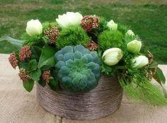 fruhlingsdeko arrangement stonecrop dianthus barbatus green houseleek trick white tulips