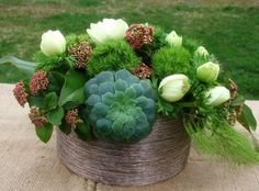 1000 ideas about dianthus barbatus on pinterest flowers - Pinterest fruhlingsdeko ...