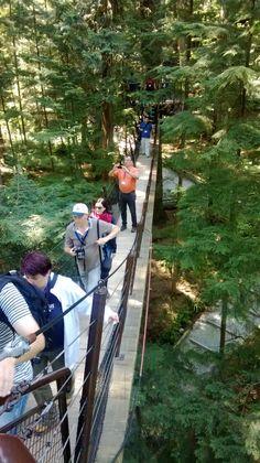 Die Seilbrücke im Capilano-Park in Nord-Vancouver