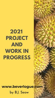 Projects, Life, Log Projects, Blue Prints