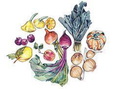 Home Grown Paintings - Holly Exley Illustration