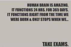 The brain is amazing...