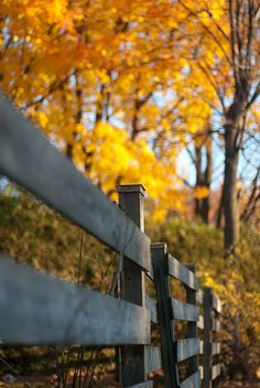 Country Living #autumn ... beautiful fence