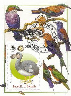 Dodo stamp from Republic of Somalia