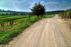 farm road - Google Search