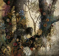 ilustraciones libro de la selva - Cerca amb Google