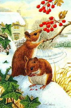 Gallery.ru / Фото #40 - Мышки, мишки, зайчики, ежи... - Fyyfvbwrtdbx1957