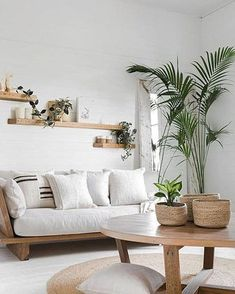 Are you guys also thinking to walk the organic and eco-friendly route and add cleaner products to your homes? If you mumbled yes, this blog is a must-read for you! . Here is a starter-pack for everyone wanting to choose a cleaner lifestyle and decorate their homes guilt-free! . . #newblogpost #newblog #homedecorinspo #homedecor #organic #homedecorinspo #cleanlivin