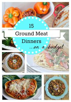 15 Ground Meat Dinners.....http://thesproutingseed.com/15-ground-meat-dinners-on-a-budget/