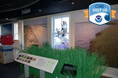 Explore some of the recreation opportunities and Visitor Centers of our estuarine reserves with these latest updates to our image gallery.   And what exactly are national estuarine research reserves? Get the facts: http://oceanservice.noaa.gov/facts/nerrs.html #ComeVisitNOS