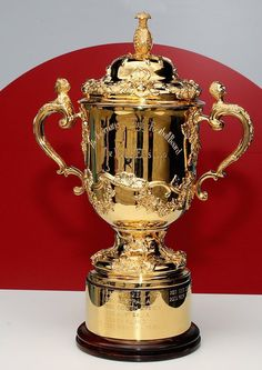 2019 sees The the first ever Rugby World Cup hosted by an Asian nation. This promises to be a historical sporting event that cannot be missed. Book your RWC 2019 tour today. Go Bokke, Rugby Cup, Rugby Union Teams, Nz All Blacks, Football Tattoo, Rugby World Cup, Afrikaans, South Africa, Pots