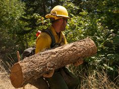 Its a good thing all our firefighters train for hard work! Photo by:Kari Greer/ USFS, Complex Fire, KNF (Aug Firefighter Training, Wildland Firefighter, Thin Green Line, Firefighting, Hard Work, Pictures, Life, Photos, Fire Fighters