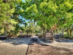 Ft Wilderness, Florida