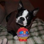 Head Tilt with a Crazy Ball! – Rocky from Ste-Sophie, Quebec, Canada (Photo)