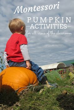 The Ultimate List of Awesome Montessori Pumpkin Activities