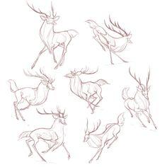 Drawing Tips deer drawing Deer Drawing, Drawing Poses, Drawing Sketches, Drawing Drawing, Drawing Tips, Animal Sketches, Animal Drawings, Deer Sketch, Creature Drawings