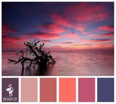 Sunset 2: Purple, Pink, Blue, coral - colour Inspiration pallet