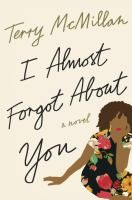 I almost forgot about you : a novel / Terry McMillan.