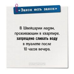 ⚖️ Смешные и глупые законы 👉https://factum-info.net/interesnoe/raznoe/389-podborka-glupykh-zakonov-chast-5  #факты #интересныефакты #открытка #закон #юмор #интересно #FactumInfo