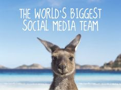 The World's Biggest Social Media Team by TourismAustralia, via Slideshare