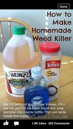 Home made weed killer. It changes the soil ph and will kill just about everything.