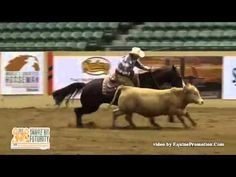 Lyn Anderson Open Bridle Fence Work 2015 SBF