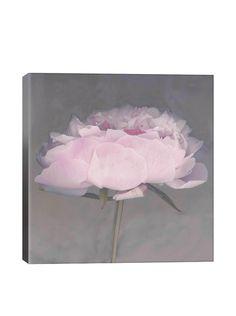 Erin Clark Jolie Gallery Wrapped Canvas Print, http://www.myhabit.com/redirect/ref=qd_sw_dp_pi_li?url=http%3A%2F%2Fwww.myhabit.com%2Fdp%2FB00UJGVG1M%3F