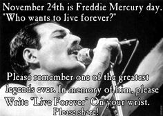 Freddie Mercury Q&A part 1 Queen Freddie Mercury, Freddie Mercury Quotes, Freddie Mercury Tattoo, Freddie Mercury Zitate, Mercury Facts, Queen Meme, King Of Queens, Love Of My Life, My Love